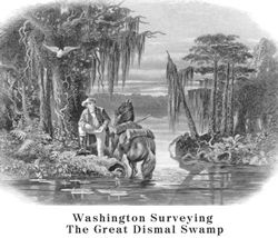 Washington surveying The Great Dismal Swamp