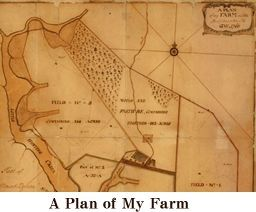 A plan of Washington's farm